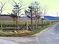 Longhaugh Farm - geograph.org.uk - 746811.jpg