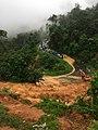 Longsor di perbatasan Riau-Sumbar.jpg