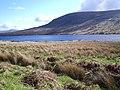 Looking towards Loch Merkland - geograph.org.uk - 172602.jpg