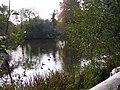 Lower Pool - geograph.org.uk - 1537747.jpg