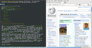 Lynx (web browser) - Lynx and Firefox rendering the same page