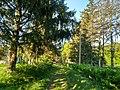 MD.ED.Hincăuți - park of Hincăuți - apr 2018 - 21.jpg