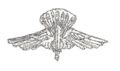 MIL ITA ass 16 9 rgt assalto paracadutisti (d).png