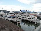 Schiffe der SGV im Hafen von Luzern