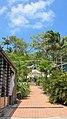 Macrossan St, Port Douglas (484033) (9443826340).jpg