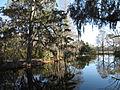 Magnolia Plantation and Gardens - Charleston, South Carolina (8556492132).jpg