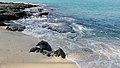 Mahai'ula Bay Beach, Kailua-Kona (504662) (23867815170).jpg