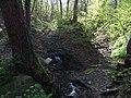 Malá Chuchle, ústí Mariánského pramene do potoka (01).jpg