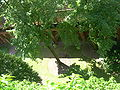 Malbork castle 3005.JPG