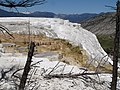 Mammoth Hot Springs Terraces - Yellowstone - panoramio (1).jpg