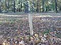 Markierungspfahl auf dem alten Branitzer Dorffriedhof.JPG