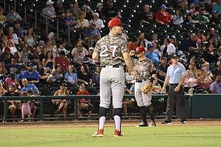 Matt Festa baseball player