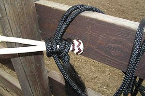 Hackamore - Close-up detail of a nylon rope mecate tied onto the bosal, note looped reins and a lead rope all come off of the knot