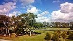 Melbourne Airport VIC 3045, Australia - panoramio (7).jpg