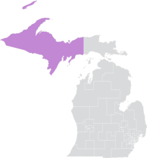 Michigans 38th Senate district American legislative district