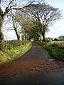Minor Road Near Auldhouse - geograph.org.uk - 281939.jpg