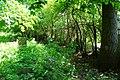 Minsk Mazowiecki, Poland - panoramio (78).jpg
