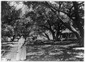 Mme. Helena Modjeska, full-length portrait, standing, facing front, holding flowers outside her home, California LCCN90707248.jpg