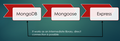 Mongoose works as an intermediate library between MongoDB and Express.png