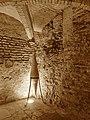 Montauban - Musée Ingres - 20141224 (6).jpg