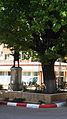 Monumentul Eroilor (1916 - 1918) (2).JPG