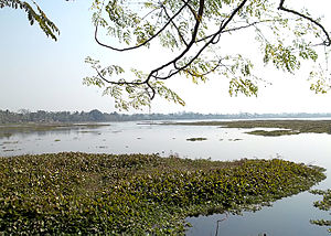 Motijhil - Motijhil Lake view
