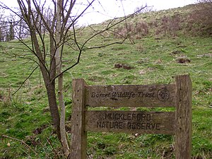 Grimstone - Image: Muckleford Nature Reserve geograph.org.uk 154642