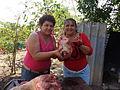 Mujeres en la preparacion de Cochino asado.jpg