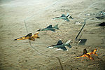 Multinational group of fighter jets during Operation Desert Shield.JPEG