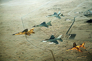 Coalition of the Gulf War - Image: Multinational group of fighter jets during Operation Desert Shield