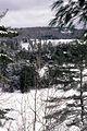 Muskoka Woods, Rosseau, Ontario in Winter - panoramio - A J Butler (3).jpg