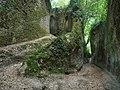 Mysterious Path (181303511).jpeg