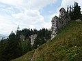 Nízke Tatry, cesta zo sedla Machnaté do Demänovskej doliny (1).jpg