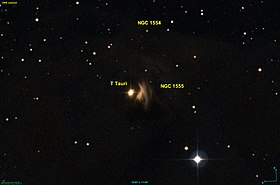 Image illustrative de l'article NGC 1555