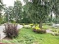 Nad Pilicą - panoramio (5).jpg