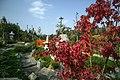 National Botanical Garden of Georgia باغ های بوتانیکال در شهر تفلیس گرجستان 25.jpg