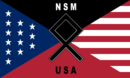 National socialist movement new flag.png