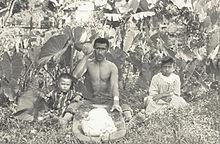 Cuisine of Hawaii - Wikipedia