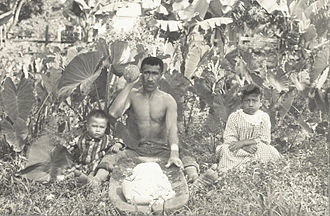 Native Hawaiians - Hawaiian man with his two children, circa 1890.