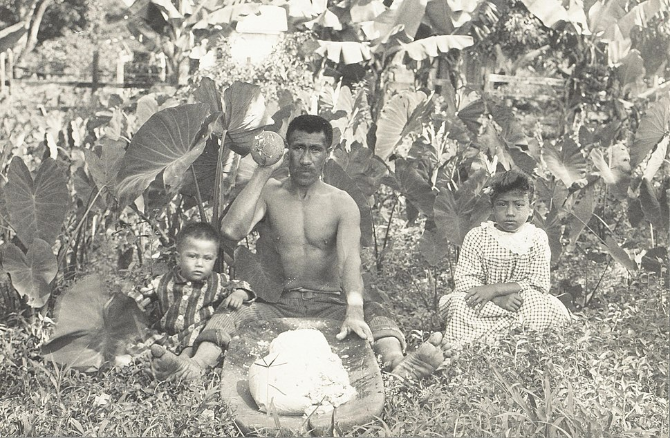 Native Hawaiian man pounding taro into poi with two children by his sides., c. 1890s
