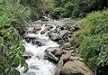 Nature - panoramio (7).jpg