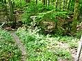 Naturpark Schönbuch - panoramio (1).jpg