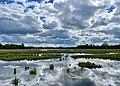 Naturreservat Stadssjön Hedemora våtmark.jpg
