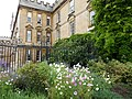 New College, Oxford (3915966948).jpg