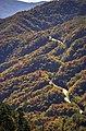 New Found Gap Fall Color - panoramio.jpg