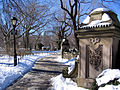 New York. Central Park. Snowy (2797118361).jpg