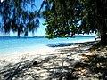 Nice Beach - panoramio (1).jpg
