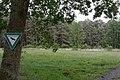 Niederrodener Lache 7.jpg
