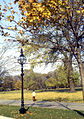 November morning in Hyde Park - geograph.org.uk - 1229521.jpg