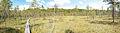 Nyrola nature trail 2.jpg
